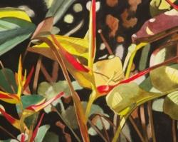 Birds of Paradise 11x15