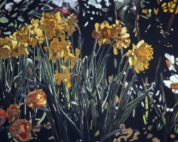 Daffodils with Tulips 40x60