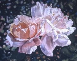 Pink Rose 40x40