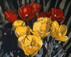 Red Yellow Tulips 9x10