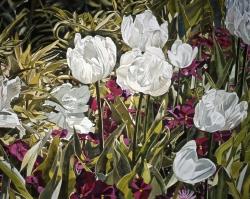 White Parrot Tulips 22x30