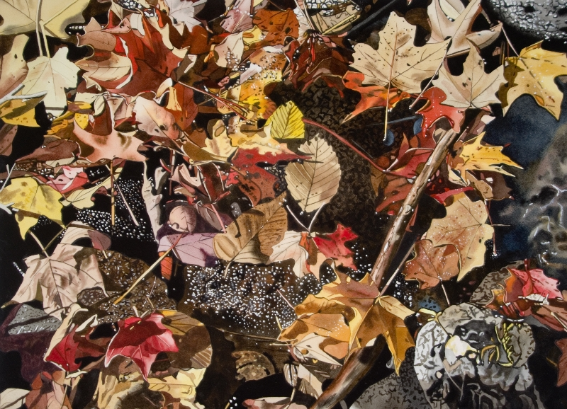 Fall Leaves with Rocks 22x30